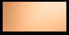 Cod. D4